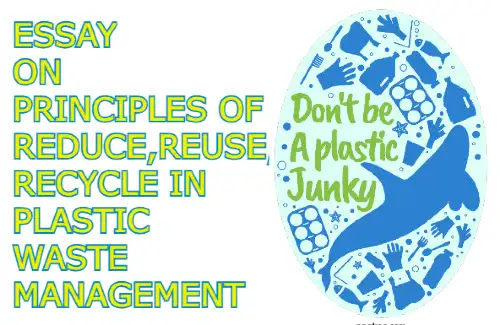 Essay on principles of reduce reuse and recycle